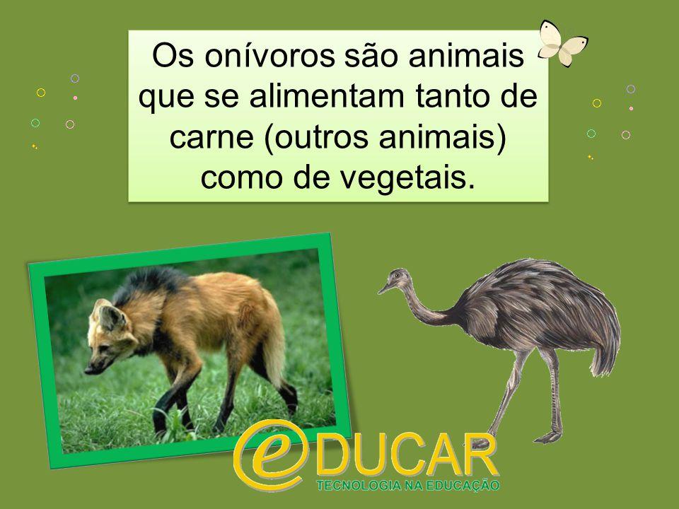 Os onívoros são animais que se alimentam tanto de carne (outros animais) como de vegetais.