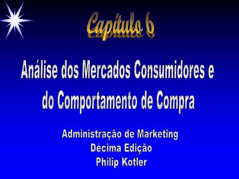 Capítulo 6 Análise dos Mercados Consumidores e