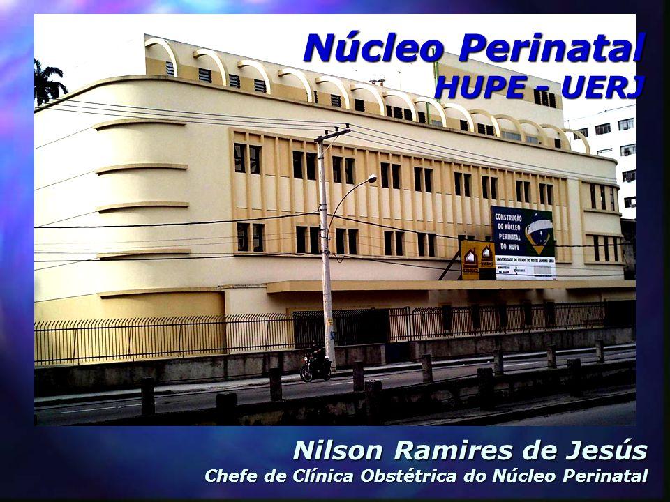 Núcleo Perinatal HUPE - UERJ