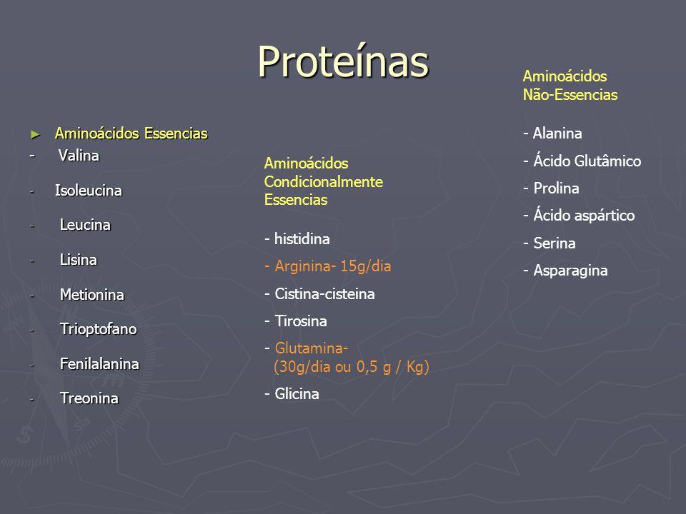 Proteínas Aminoácidos Não-Essencias - Alanina Ácido Glutâmico Prolina