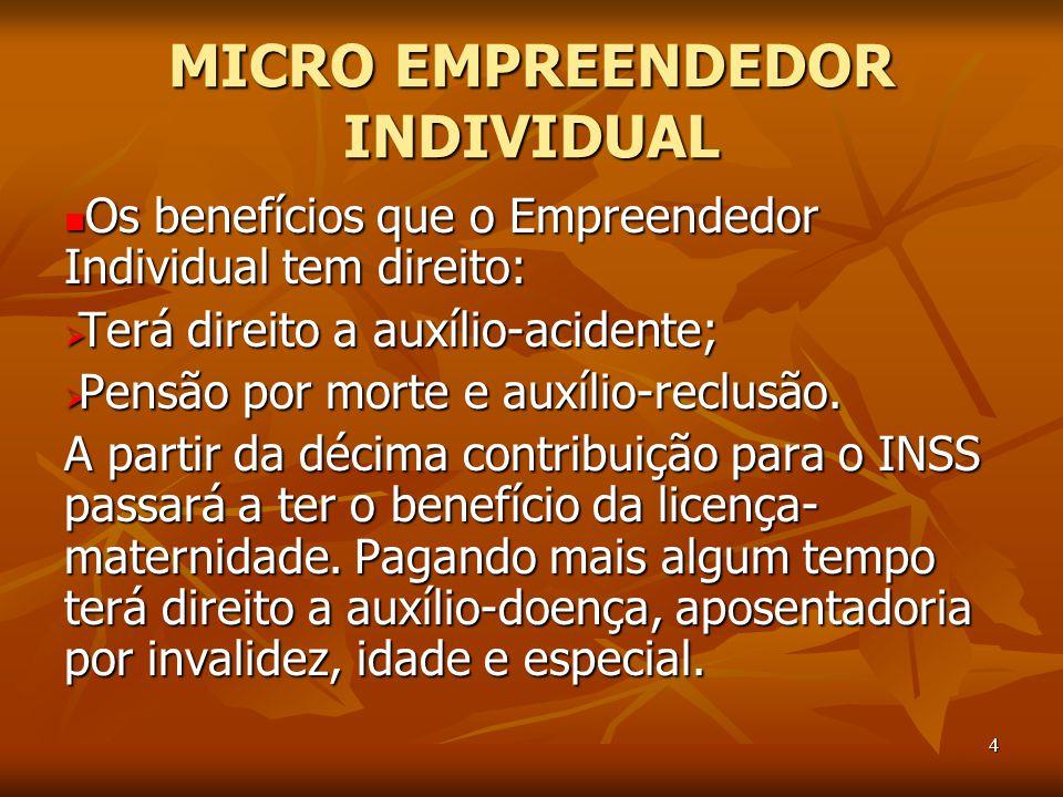 MICRO EMPREENDEDOR INDIVIDUAL