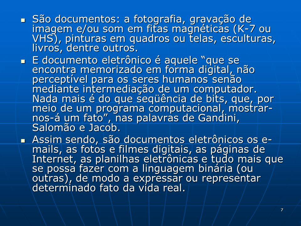 São documentos: a fotografia, gravação de imagem e/ou som em fitas magnéticas (K-7 ou VHS), pinturas em quadros ou telas, esculturas, livros, dentre outros.