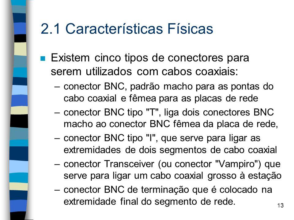 2.1 Características Físicas
