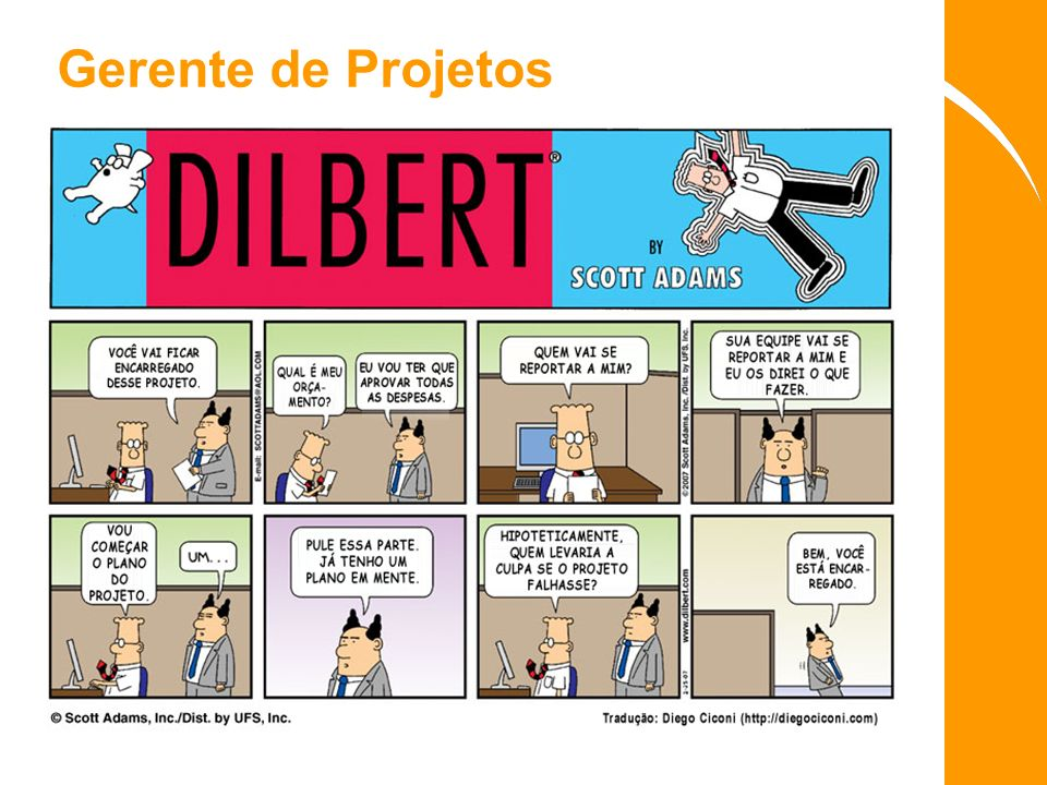 Gerente de Projetos
