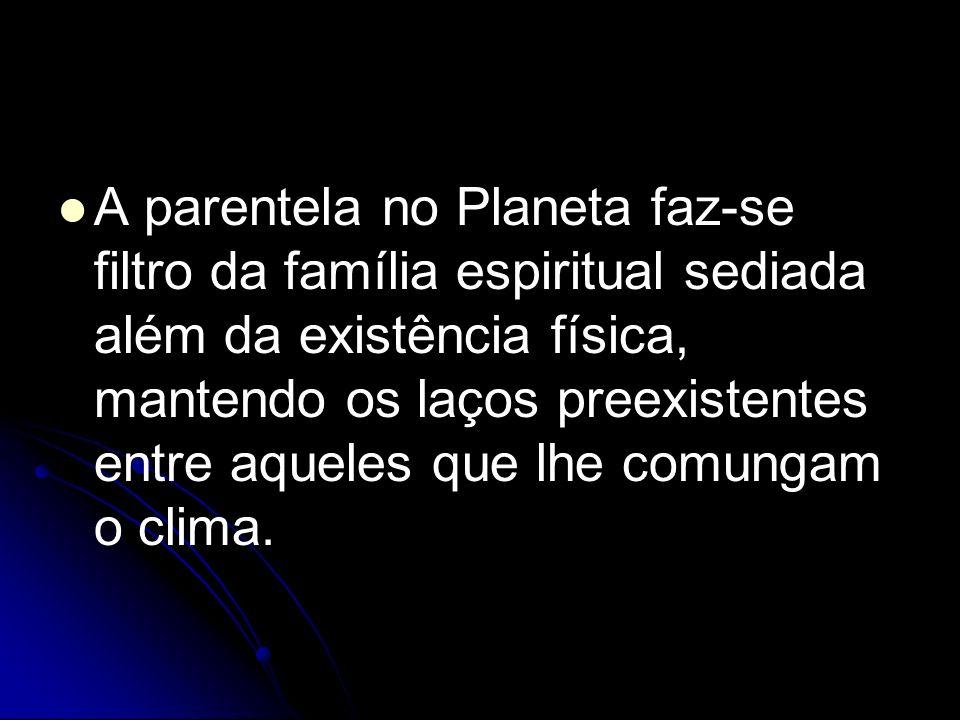A parentela no Planeta faz-se filtro da família espiritual sediada além da existência física, mantendo os laços preexistentes entre aqueles que lhe comungam o clima.