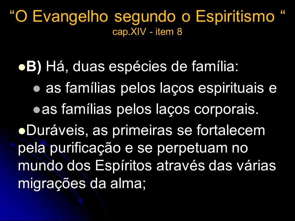 O Evangelho segundo o Espiritismo cap.XIV - item 8
