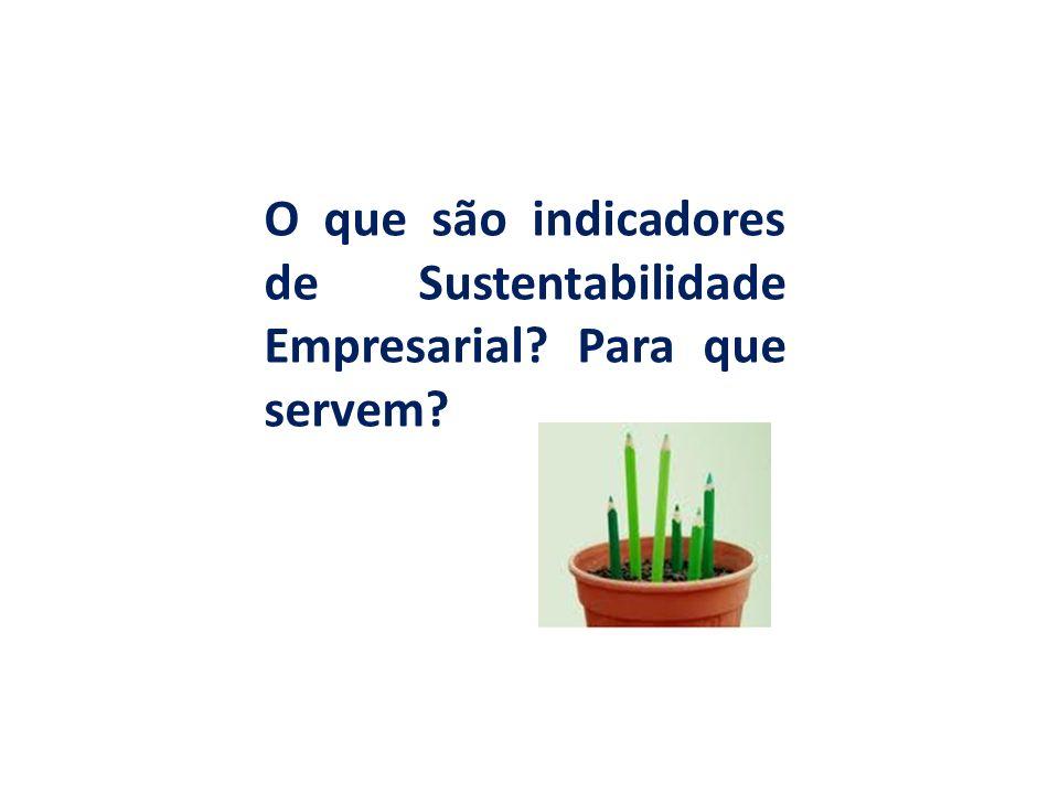 O que são indicadores de Sustentabilidade Empresarial Para que servem
