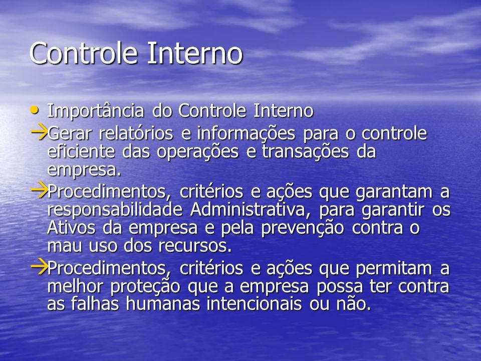 Controle Interno Importância do Controle Interno