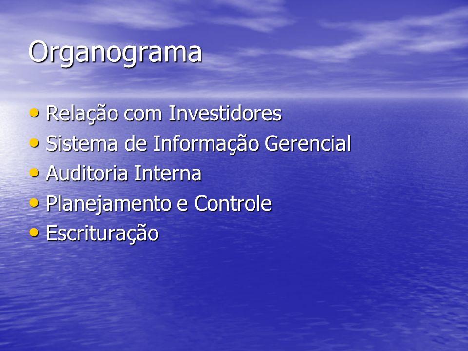 Organograma Relação com Investidores Sistema de Informação Gerencial