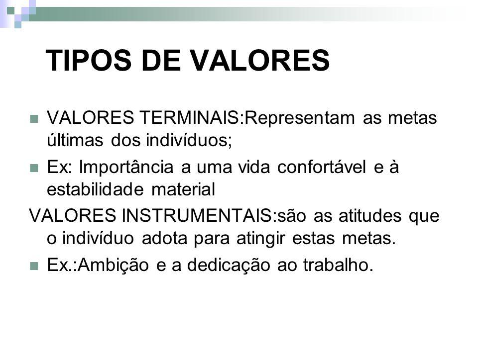 TIPOS DE VALORES VALORES TERMINAIS:Representam as metas últimas dos indivíduos; Ex: Importância a uma vida confortável e à estabilidade material.