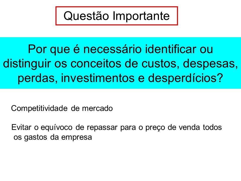 Questão Importante Por que é necessário identificar ou distinguir os conceitos de custos, despesas, perdas, investimentos e desperdícios