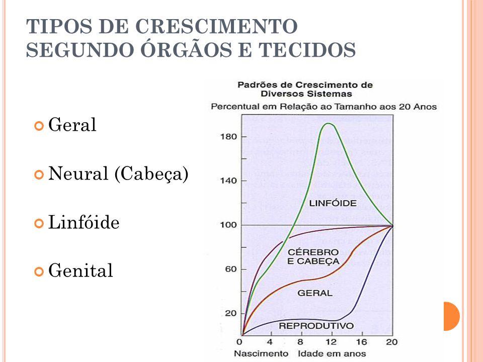 TIPOS DE CRESCIMENTO SEGUNDO ÓRGÃOS E TECIDOS
