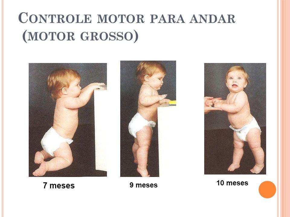 Controle motor para andar (motor grosso)