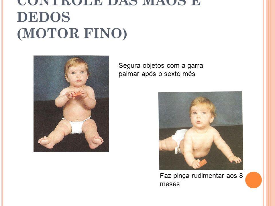 CONTROLE DAS MÃOS E DEDOS (MOTOR FINO)