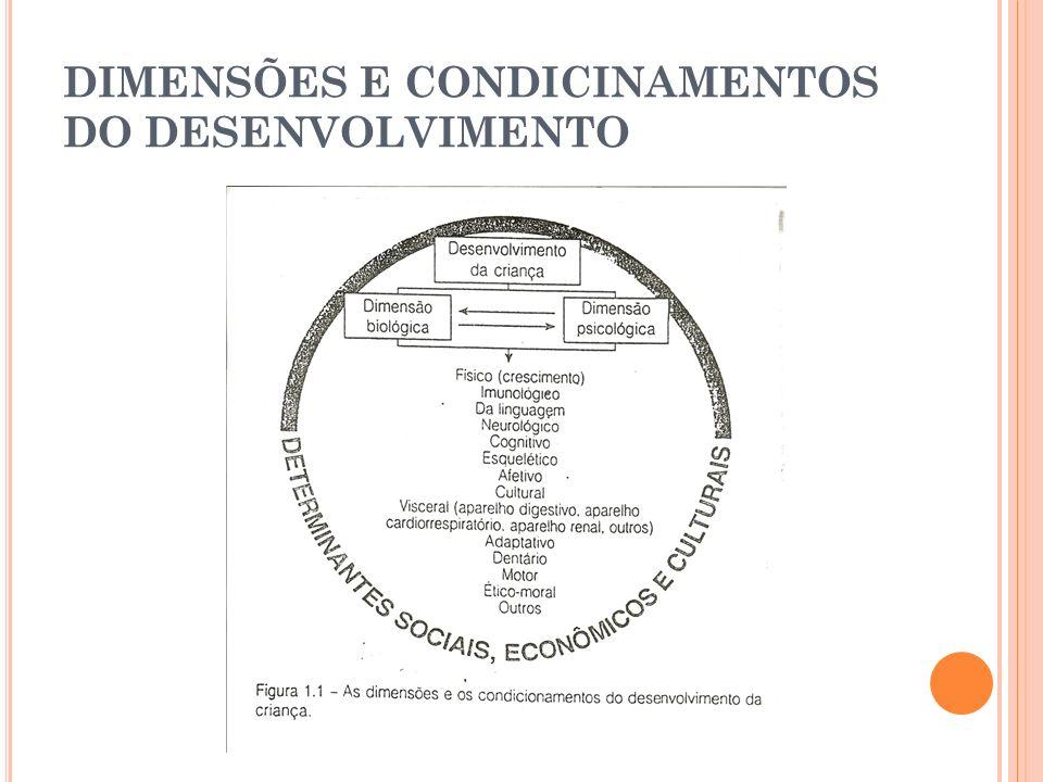 DIMENSÕES E CONDICINAMENTOS DO DESENVOLVIMENTO