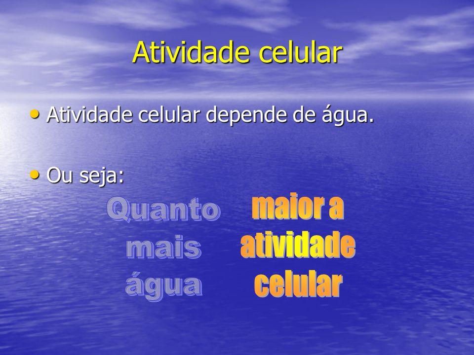 Atividade celular maior a Quanto atividade mais celular água