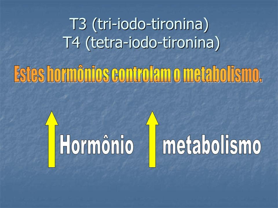 T3 (tri-iodo-tironina) T4 (tetra-iodo-tironina)