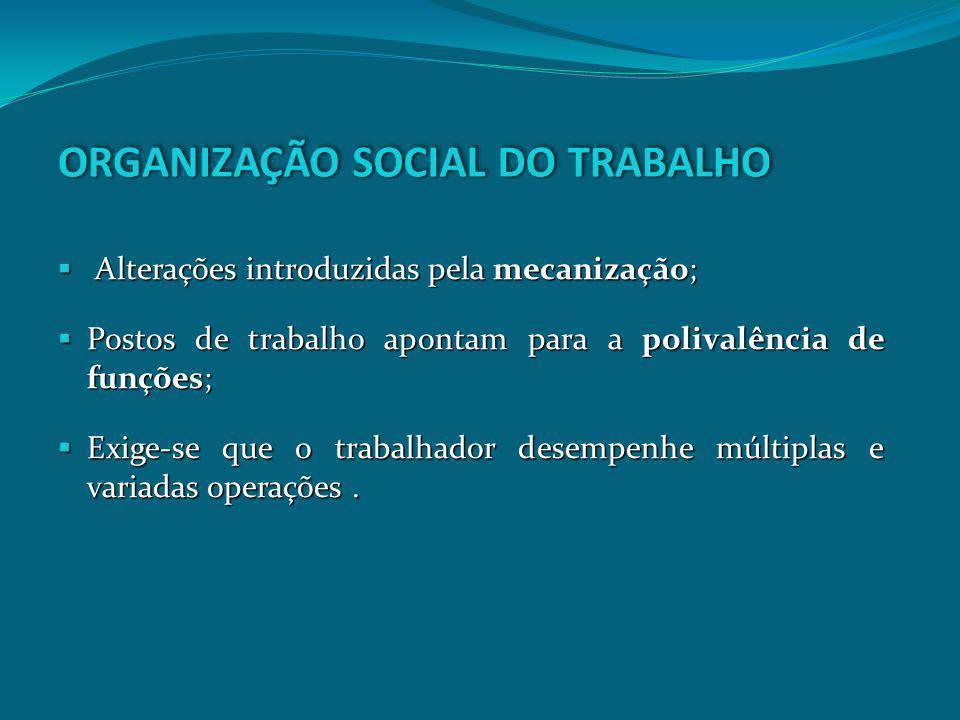 ORGANIZAÇÃO SOCIAL DO TRABALHO