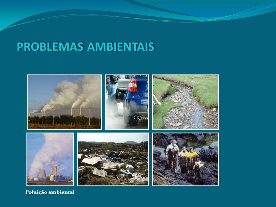 PROBLEMAS AMBIENTAIS Poluição ambiental