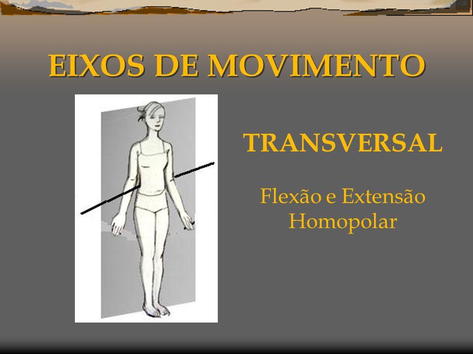 EIXOS DE MOVIMENTO TRANSVERSAL Flexão e Extensão Homopolar