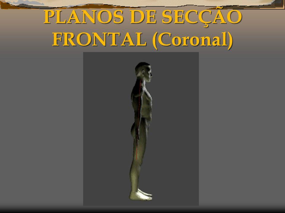PLANOS DE SECÇÃO FRONTAL (Coronal)
