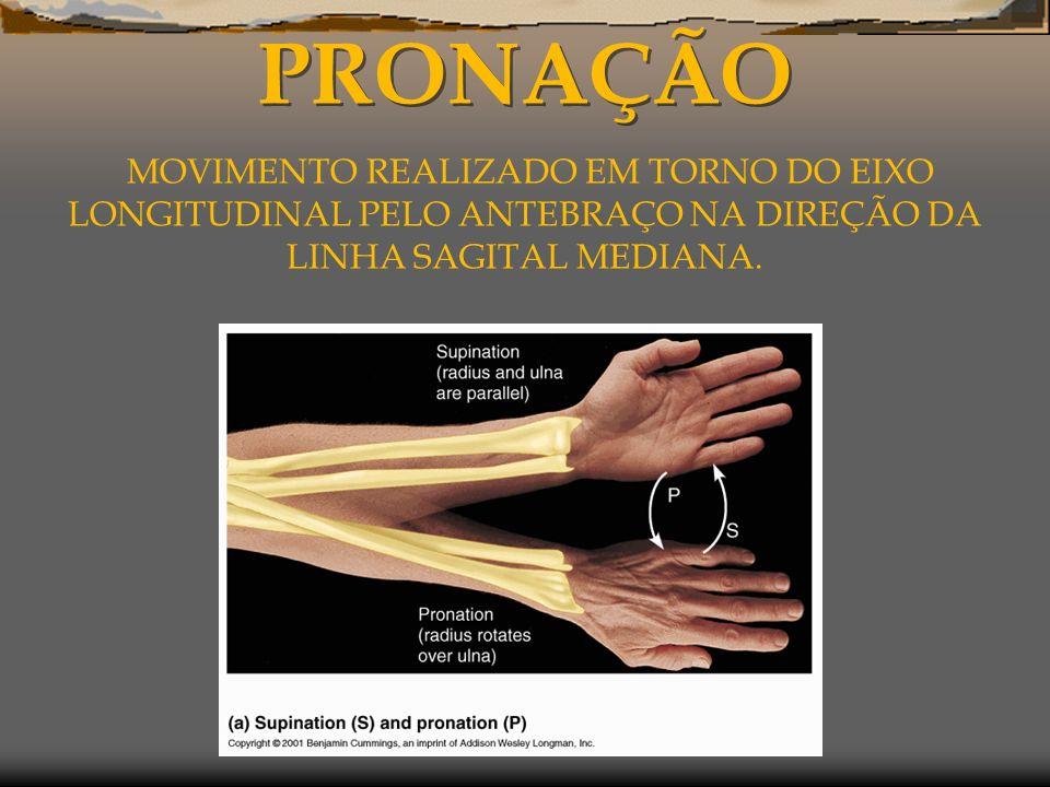 PRONAÇÃO MOVIMENTO REALIZADO EM TORNO DO EIXO LONGITUDINAL PELO ANTEBRAÇO NA DIREÇÃO DA LINHA SAGITAL MEDIANA.