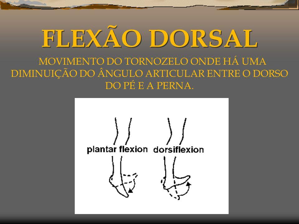FLEXÃO DORSAL MOVIMENTO DO TORNOZELO ONDE HÁ UMA DIMINUIÇÃO DO ÂNGULO ARTICULAR ENTRE O DORSO DO PÉ E A PERNA.
