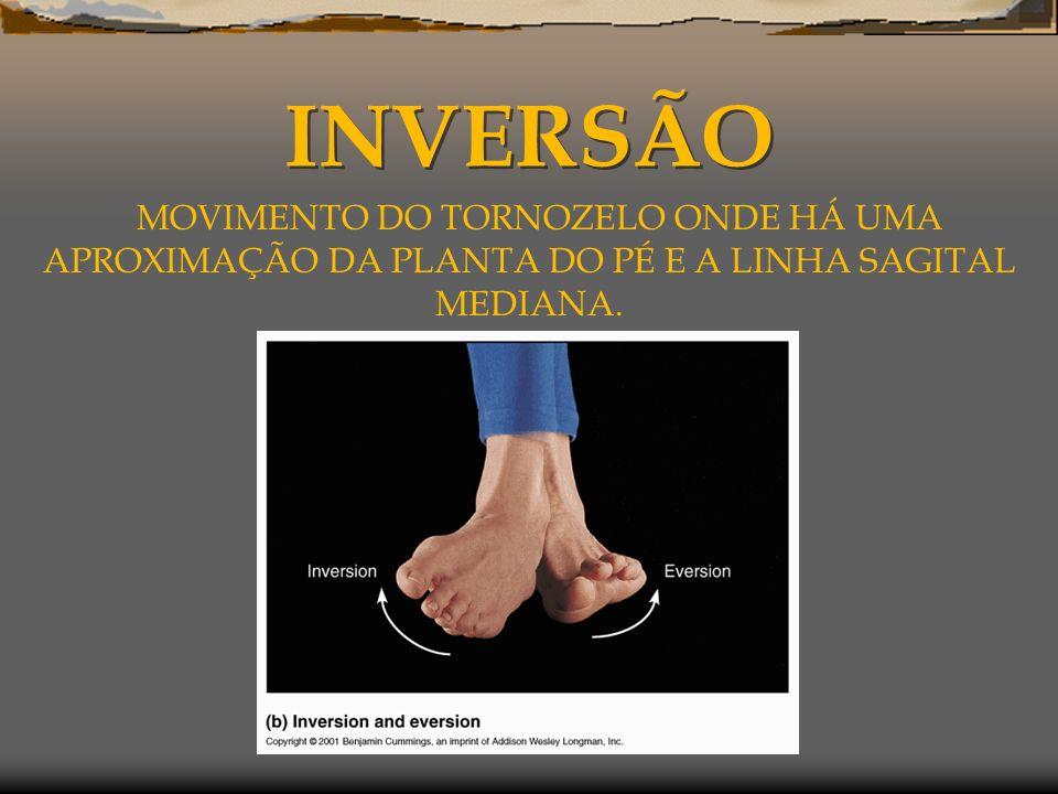 INVERSÃO MOVIMENTO DO TORNOZELO ONDE HÁ UMA APROXIMAÇÃO DA PLANTA DO PÉ E A LINHA SAGITAL MEDIANA.