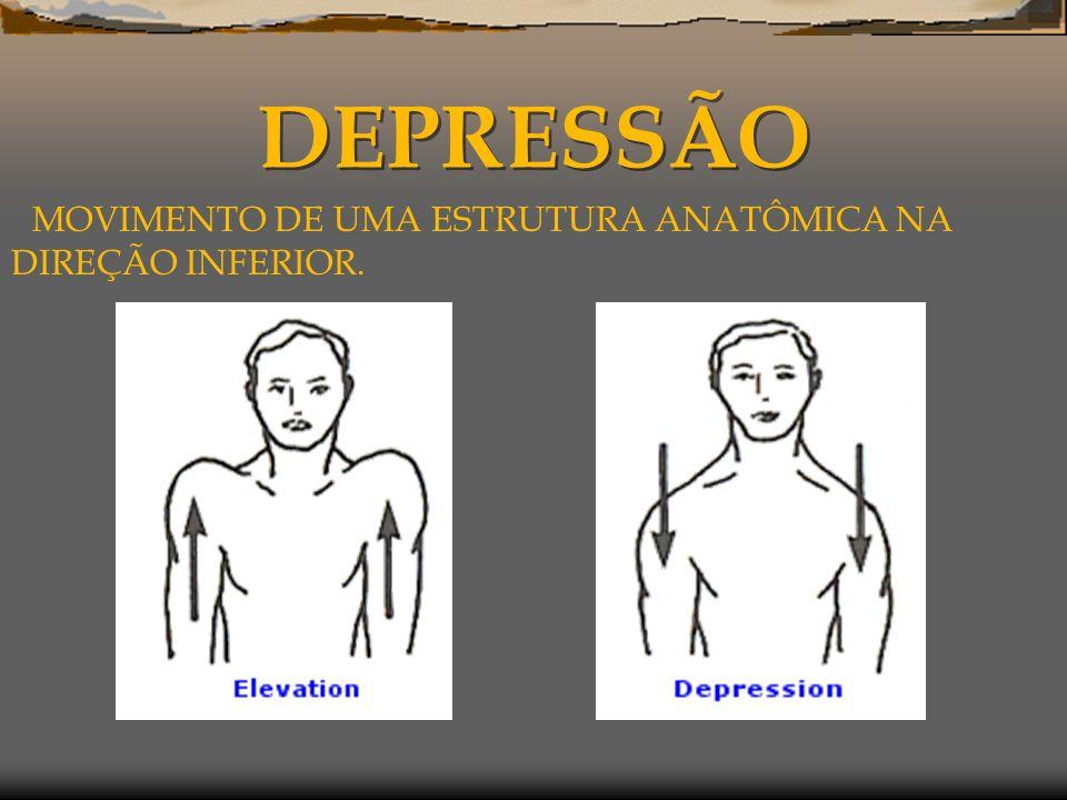 DEPRESSÃO MOVIMENTO DE UMA ESTRUTURA ANATÔMICA NA DIREÇÃO INFERIOR.