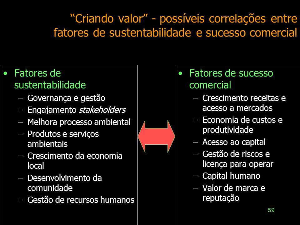 Criando valor - possíveis correlações entre fatores de sustentabilidade e sucesso comercial