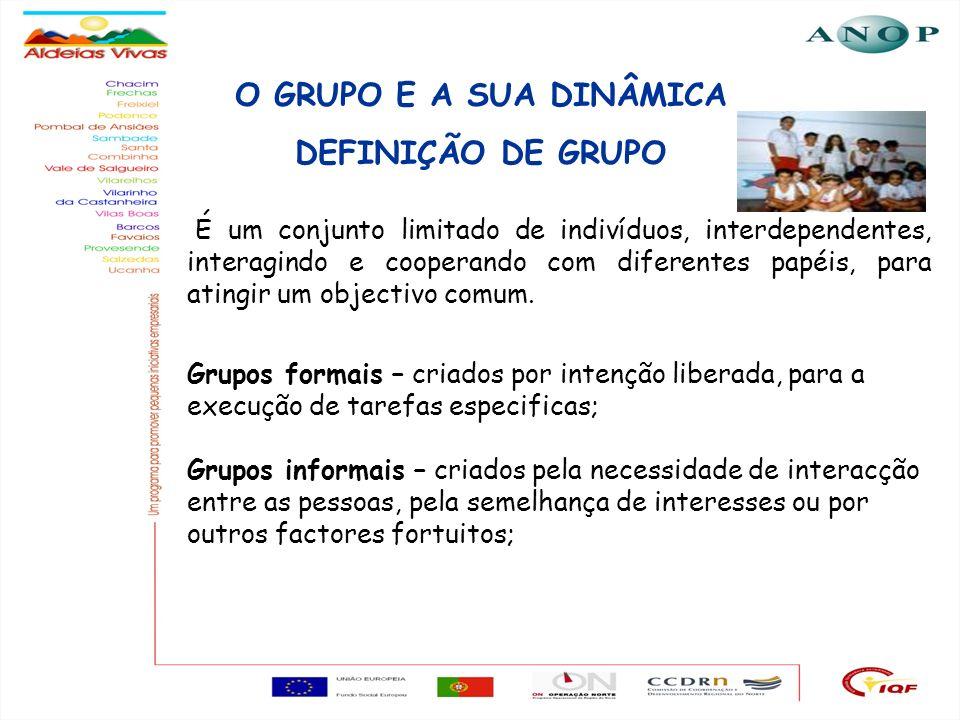 O GRUPO E A SUA DINÂMICA DEFINIÇÃO DE GRUPO