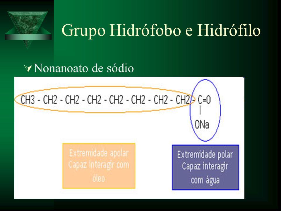 Grupo Hidrófobo e Hidrófilo