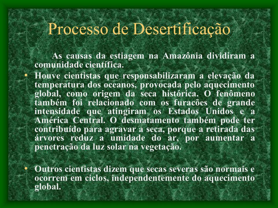 Processo de Desertificação