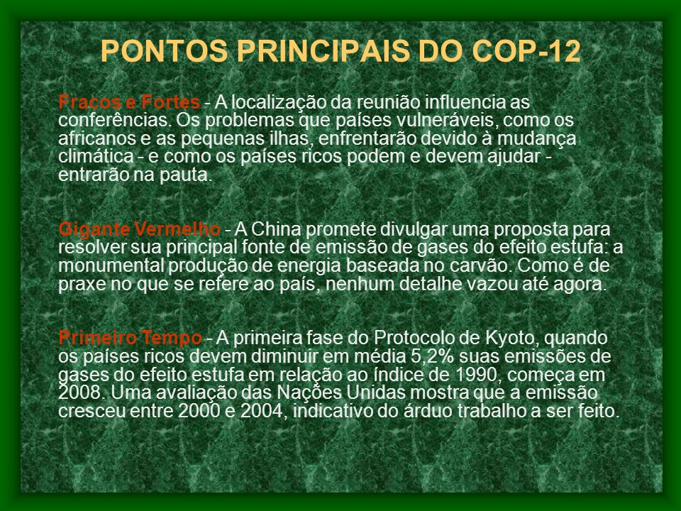 PONTOS PRINCIPAIS DO COP-12