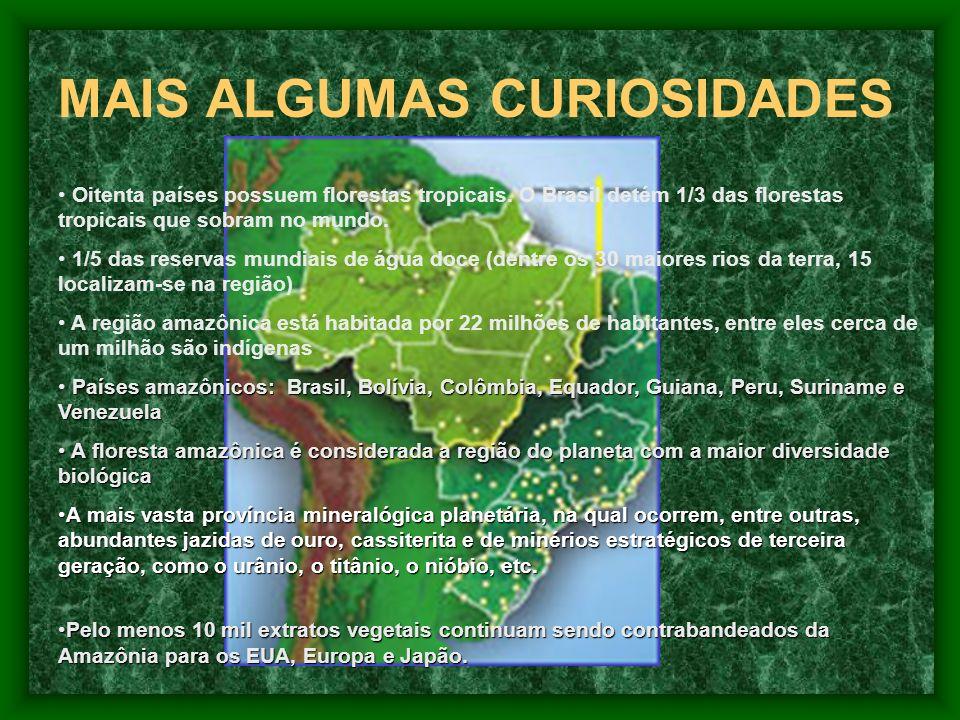 MAIS ALGUMAS CURIOSIDADES