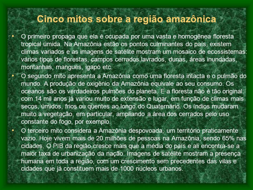 Cinco mitos sobre a região amazônica