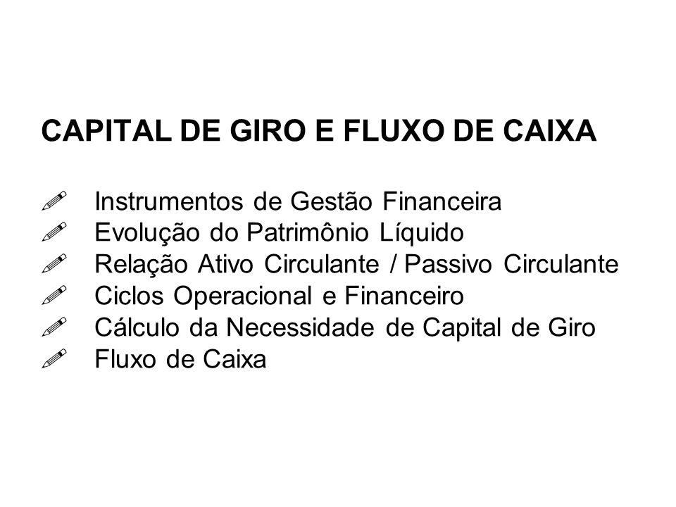 CAPITAL DE GIRO E FLUXO DE CAIXA. Instrumentos de Gestão Financeira