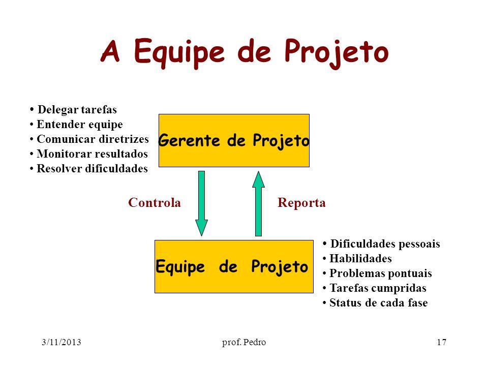 A Equipe de Projeto Gerente de Projeto Equipe de Projeto