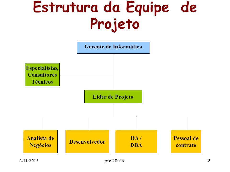 Estrutura da Equipe de Projeto