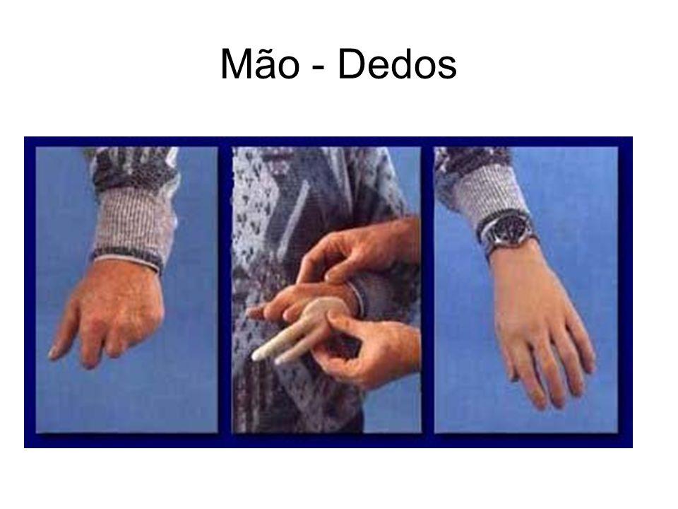 Mão - Dedos