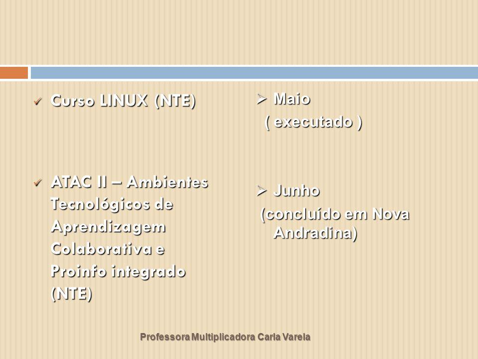 Curso LINUX (NTE) ATAC II – Ambientes Tecnológicos de Aprendizagem Colaborativa e Proinfo integrado (NTE)