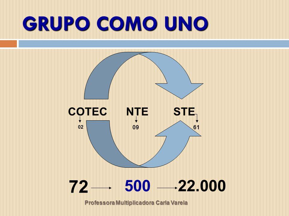GRUPO COMO UNO 72 500 22.000 COTEC NTE STE 09 61