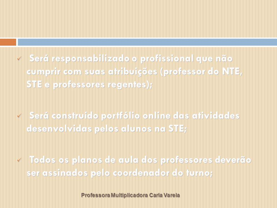 Será responsabilizado o profissional que não cumprir com suas atribuições (professor do NTE, STE e professores regentes);