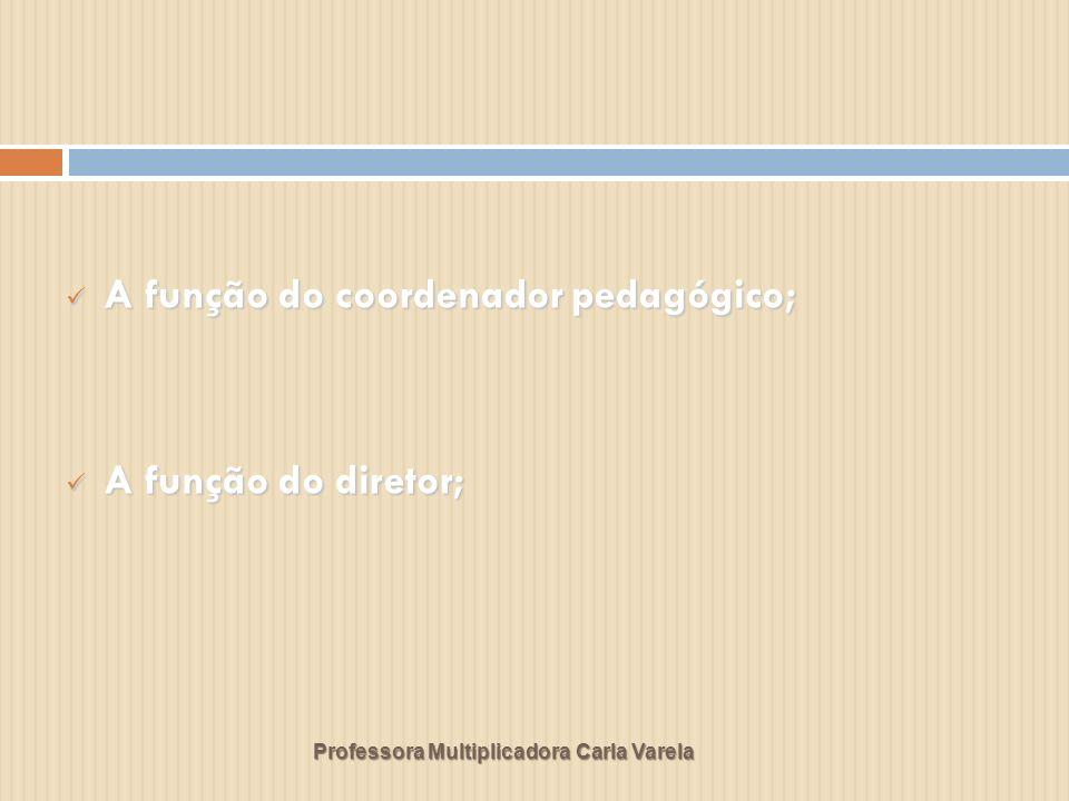 A função do coordenador pedagógico;