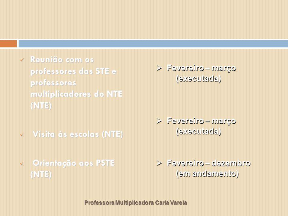 Visita às escolas (NTE) Orientação aos PSTE (NTE)