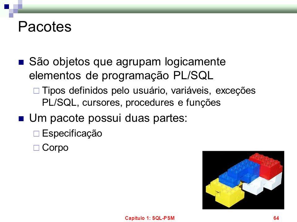 Pacotes São objetos que agrupam logicamente elementos de programação PL/SQL.