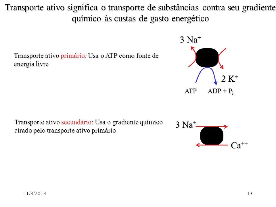 Transporte ativo significa o transporte de substâncias contra seu gradiente químico às custas de gasto energético