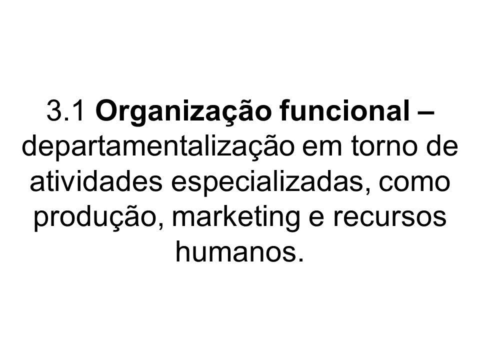 3.1 Organização funcional – departamentalização em torno de atividades especializadas, como produção, marketing e recursos humanos.