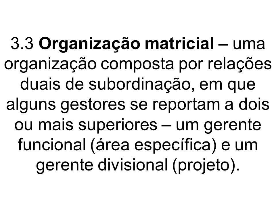 3.3 Organização matricial – uma organização composta por relações duais de subordinação, em que alguns gestores se reportam a dois ou mais superiores – um gerente funcional (área específica) e um gerente divisional (projeto).