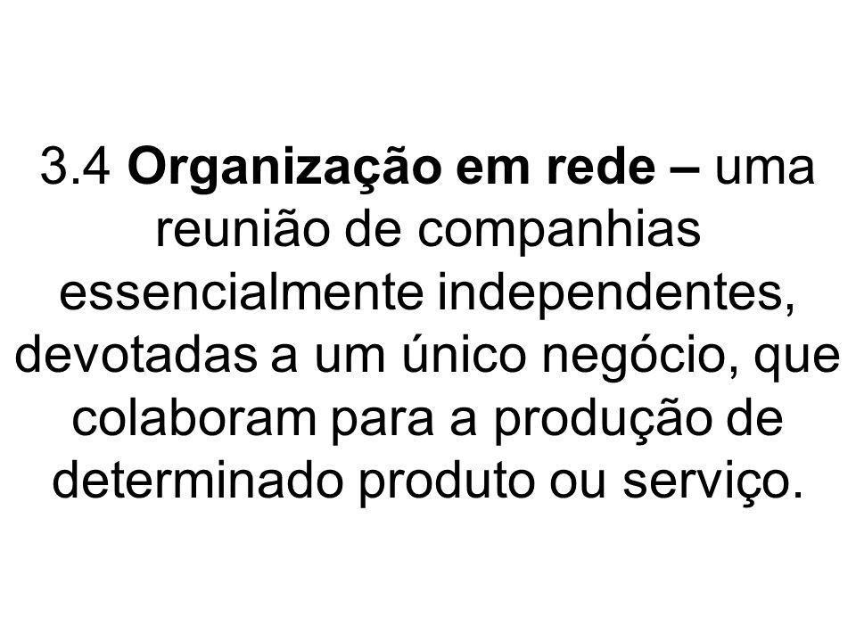 3.4 Organização em rede – uma reunião de companhias essencialmente independentes, devotadas a um único negócio, que colaboram para a produção de determinado produto ou serviço.